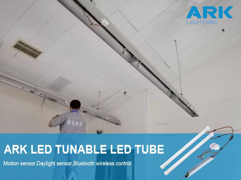 tunable-white-led-tube-arkshine.com-web.jpg